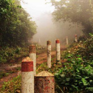 Sentier brumeux