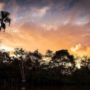 Visage d'Amazonie